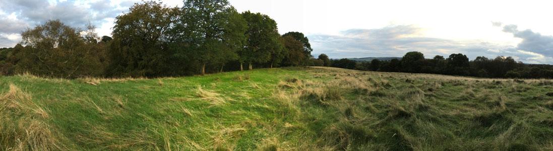 land.crop